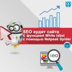 SEO аудит сайта c функцией «white label» (брендированные отчеты) с помощью Netpeak Spider