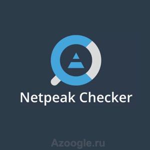 Netpeak Checker(Нетпик чекер)